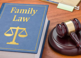 Child Custody Evaluations